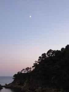 Element Metall: Sonnenuntergang von Christiane Witt - Feng Shui Beratung