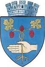 Wappen von Medias