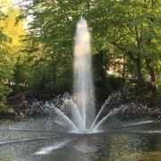 Springbrunnen in Frankfurt am Main