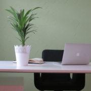 Büro von Christiane Witt - Feng Shui Beratung
